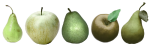 appelsenperen